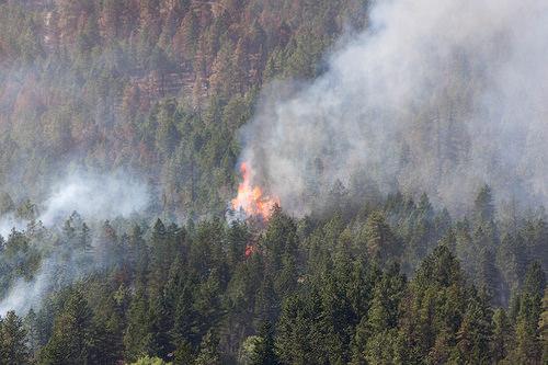Smith Creek Fire 2014-07-19 042-LR